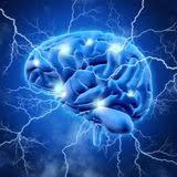 שבירת מיתוסים על המוח האנושי