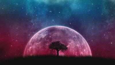 איך לרתום את חוקי היקום לטובתנו