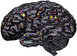 מוח ודמיון