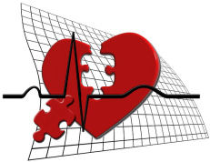 מחקרים על הלב