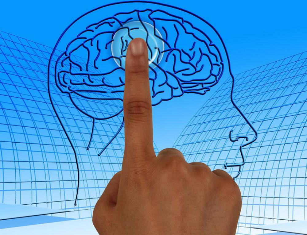 מה קורה במוח כאשר אנו מדמיינים?