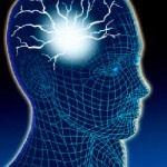 תכנות המוח